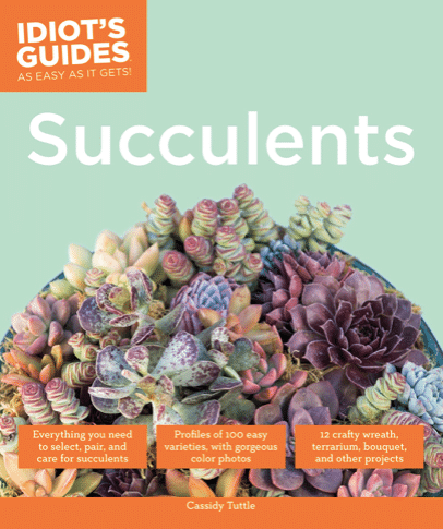 Succulents (Idiot's Guides)